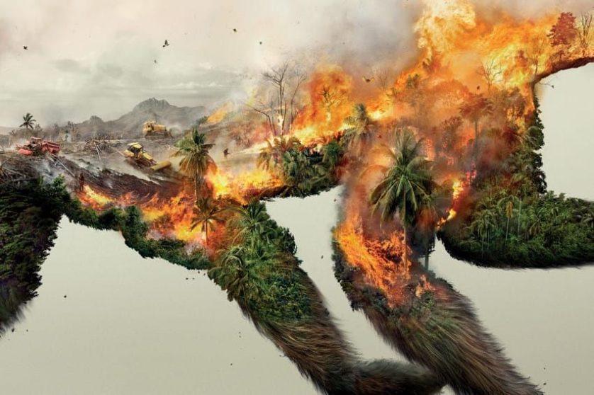 Principais cientistas do mundo: parem de destruir a natureza ou sofram  pandemias ainda piores - Ambientebrasil - Notícias