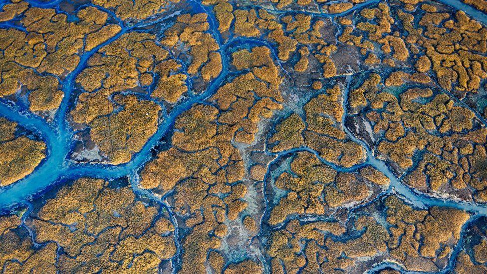 Mares saudáveis protegem ecossistemas e serviços vitais. Fonte: GETTY IMAGES.